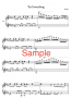 Try Everything Piano Music Sheet7